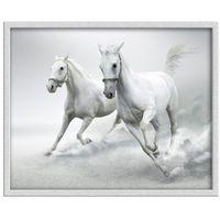 Obraz Knor 40 x 50 cm (5901554505131)