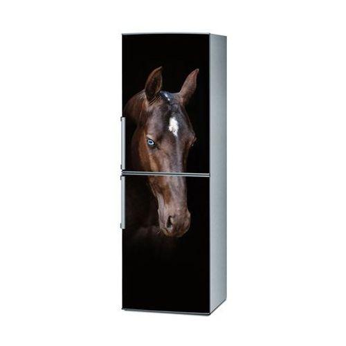 Gdzie kupić Naklejka na lodówkę - koń 1721 marki Stikero
