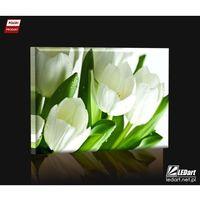 Ledart Białe tulipany obraz podświetlany led