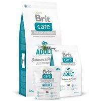 Brit care adult, łosoś i ziemniak - 2 x 12 kg (8595602510139)