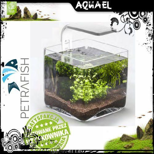 AQUAEL Akwarium Aqua Decoris Cube 20X20X20 Cm - DARMOWA DOSTAWA OD 95 ZŁ!