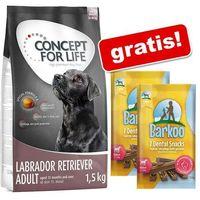 Concept for life 6 kg + barkoo dental snacks, dla średnich psów, 360 g, 14 szt. gratis! - labrador retriever adult