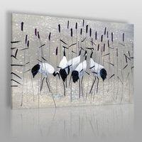 Vaku-dsgn Żurawie nad rozlewiskiem - nowoczesny obraz na płótnie