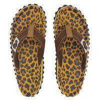 - japonki islander leopard, Gumbies