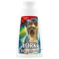 DermaPharm Szampon York 150ml (5901742080020)