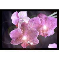 Eglo 75036 - Świecący obraz LED dekoracyjny ORCHIDS 4xLED/0,02W (9002759750367)