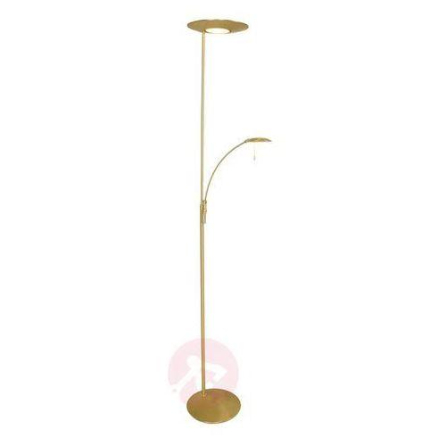 Steinhauer zenith lampa stojąca led mosiądz, 2-punktowe - nowoczesny - obszar wewnętrzny - zenith - czas dostawy: od 6-10 dni roboczych