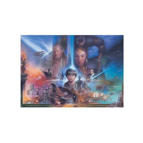 Disney Fototapeta flizelinowa star wars i wys.219 cmcmspacjaxspacjaszer.312 cmcm