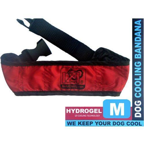 Izibodycooling Chłodna czerwona obroża dla psa z hydrożelem rozmiar m