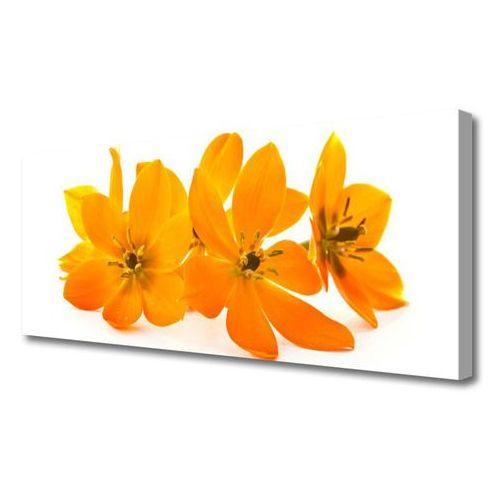 Tulup.pl Obraz na płótnie pomarańczowe roślina kwiaty