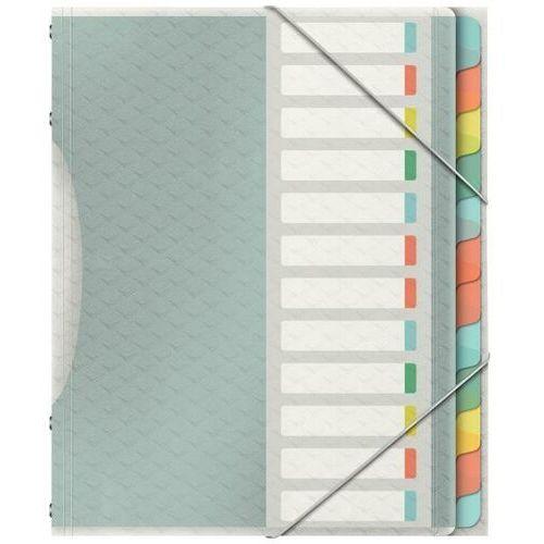 Esselte Teczka segregująca colourice 12 przekładkami 626256 (4049793053103)