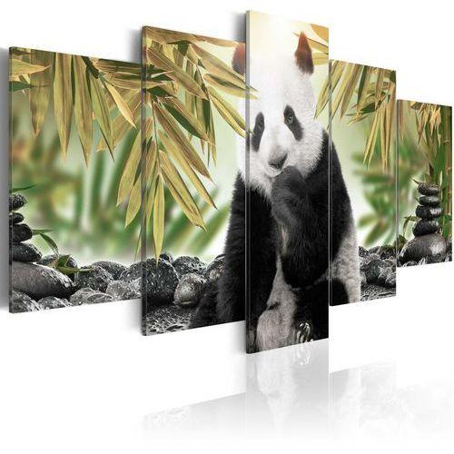 Obraz - uroczy miś panda marki Artgeist