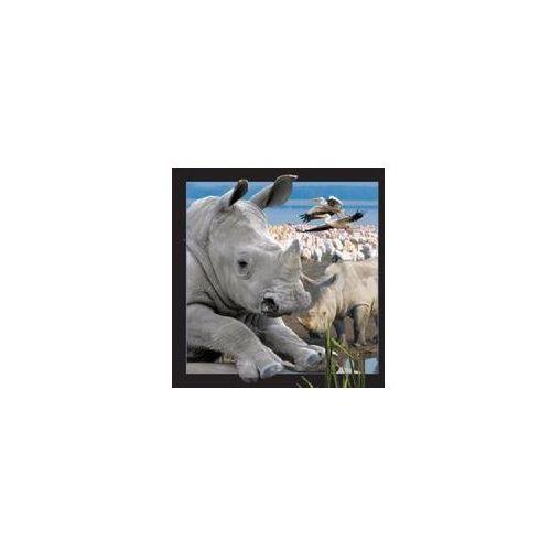 Magnes 3D - Nosorożec