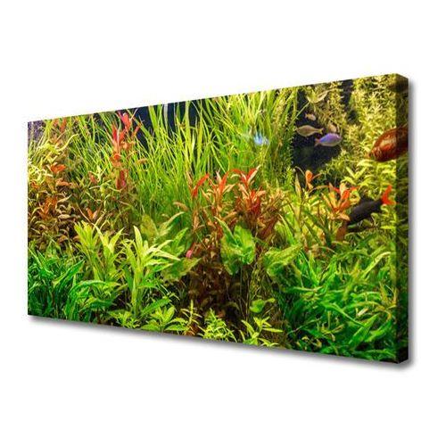 Obraz Canvas Akwarium Rybki Rośliny