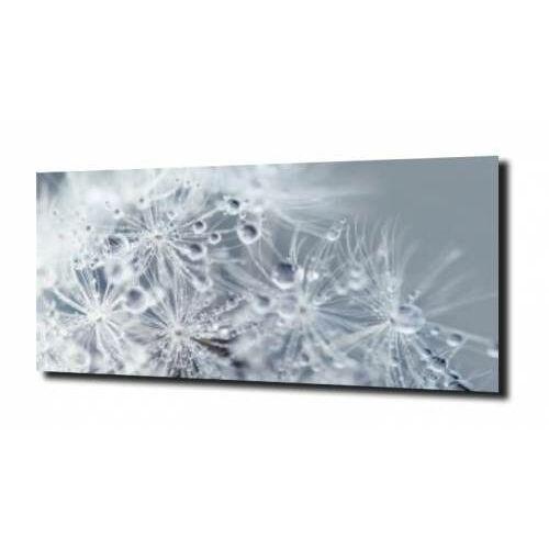 obraz na szkle, panel szklany Dmuchawce 1, C142