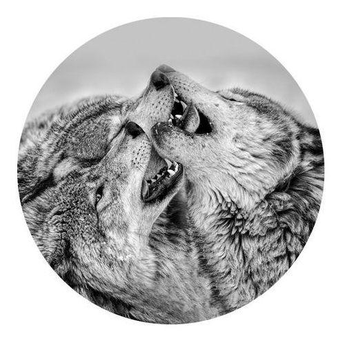 Obraz Glasspik koło Wolves fi 70 cm (5902841508675)