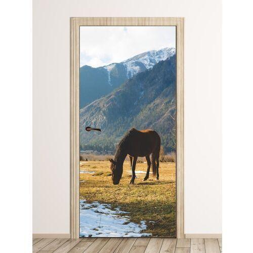 Wally - piękno dekoracji Fototapeta na drzwi koń pasący się na górskiej łące fp 6191