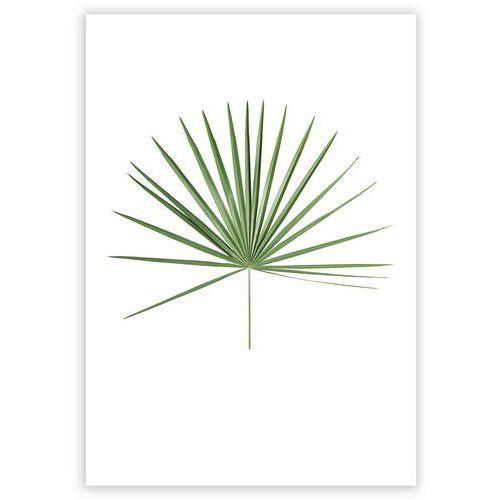plakat tropical leaf green, 21 x 30 cm marki Dekoria