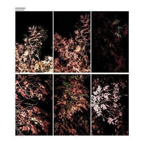 Solidification - Henriksen, Arve (Płyta winylowa)