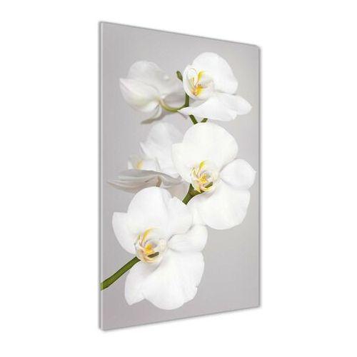 Wallmuralia.pl Foto obraz akryl do salonu biała orchidea