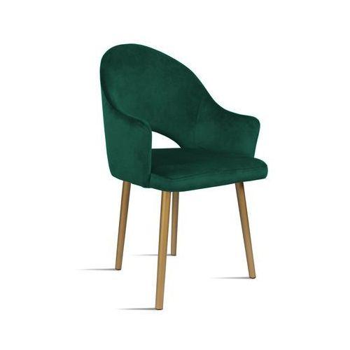 Krzesło BARI zielony/ noga złota/ SO260, kolor zielony