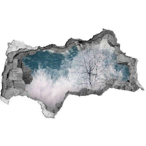 Wallmuralia.pl Dziura 3d w ścianie naklejka drzewa zimą