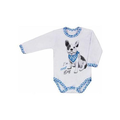 Dziecięce body z długim rękawem Koala Cool Dog biało-niebieskie, kolor biały