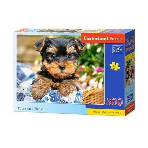 Puzzle 300 Puppy on a Picnic CASTOR - SZYBKA WYSYŁKA (od 49 zł gratis!) / ODBIÓR: ŁOMIANKI k. Warszawy