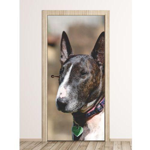 Wally - piękno dekoracji Fototapeta na drzwi pies fp 6161