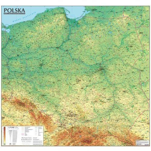 Polska. Mapa Ogólnogeograficzna mapa ścienna oprawiona w listwy, 83107901323MP (6746113)