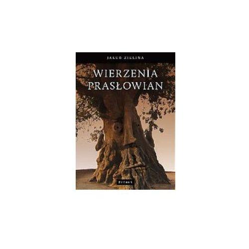 Wierzenia prasłowian - Jakub Zielina - Zakupy powyżej 60zł dostarczamy gratis, szczegóły w sklepie (152 str.)