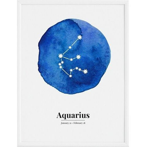 Plakat aquarius 30 x 40 cm marki Follygraph