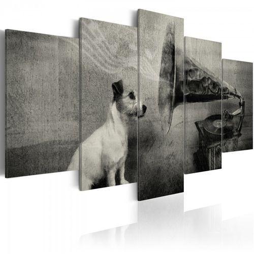 Artgeist Obraz - piesek wsłuchujący się w muzykę z gramofonu (100x50 cm)