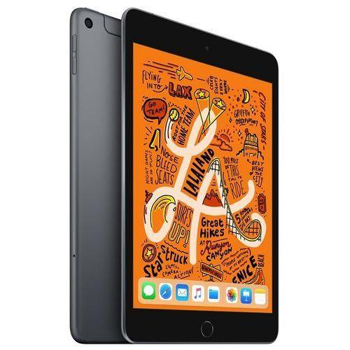 Apple iPad mini 256GB 4G