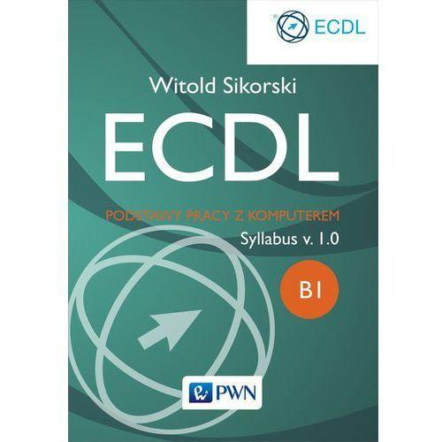 ECDL. Podstawy pracy z komputerem Moduł B1 - Dostępne od: 2014-10-16 (ilość stron 150)