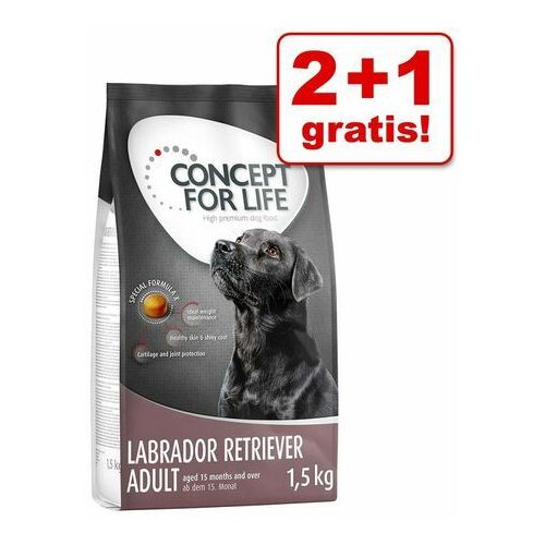 Concept for life 2+1 gratis! karma sucha dla psa, 3 x 1,5 kg - mini adult (4260358512563)