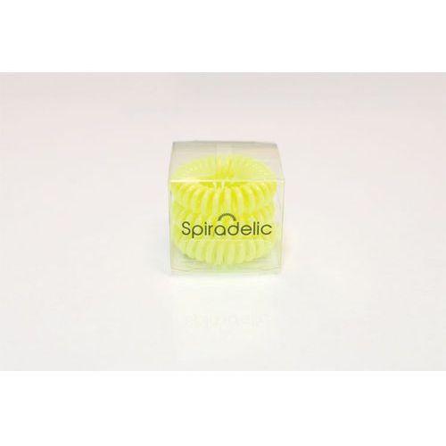 Gumki Spiradelic Neon 3 szt. - limonka z kategorii Akcesoria fryzjerskie