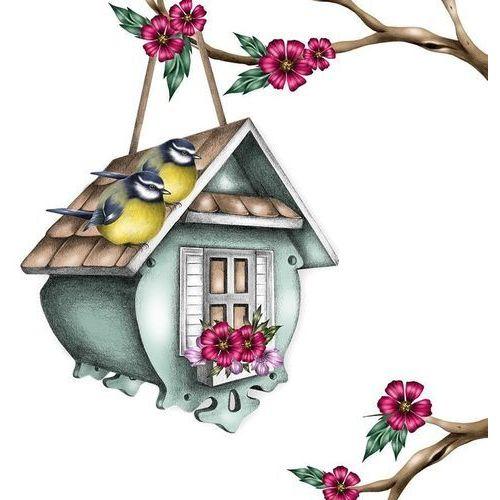 Karnet swarovski kwadrat cl0327 karmink dla ptaków marki Clear creations