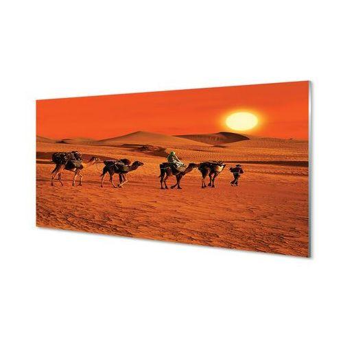 Obrazy akrylowe Wielbłądy ludzie pustynia słońce niebo