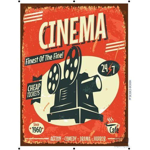 Obraz cinema pt013t2 marki Consalnet