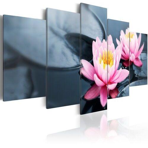 Obraz - Marzenie o lilii wodnej