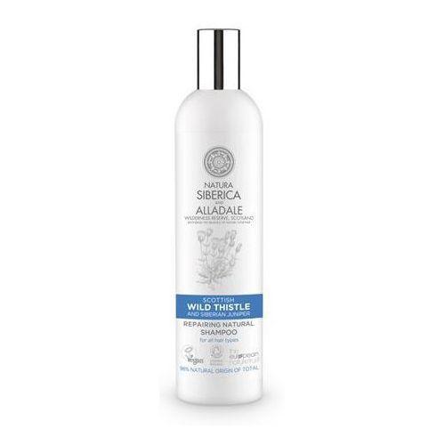 Natura Siberica, Regenerujący szampon do włosów Dziki Oset, 400ml - Siberica OD 24,99zł DARMOWA DOSTAWA KIOSK RUCHU