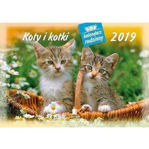 Kalendarz 2019 Rodzinny Koty i kotki WL9