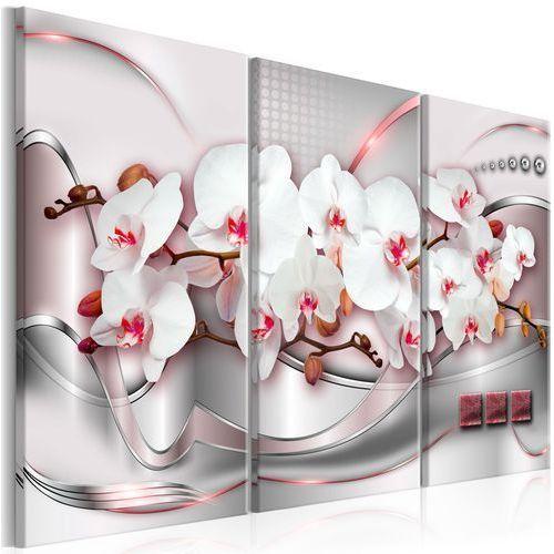 Obraz - cudowne orchidee i marki Artgeist