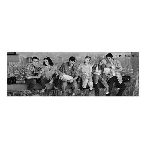 Gf Friends przyjaciele na belce - nowy jork - lunch - plakat