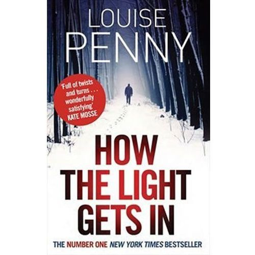 How the Light Gets in (9780751544237)