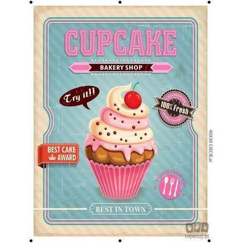 Obraz cupcake turkusowy ptd099t2 marki Consalnet