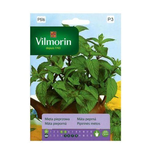 Mięta pieprzowa nasiona tradycyjne 0.1 g VILMORIN, OYZ320833