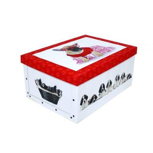 Pudełko kartonowe MAXI PIESKI-CZERWONE_OKULARY z kategorii Pozostałe dla dzieci