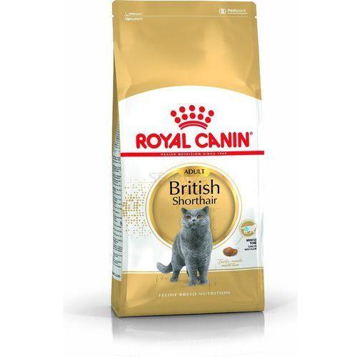 british shorthair adult 10kg - 10kg marki Royal canin